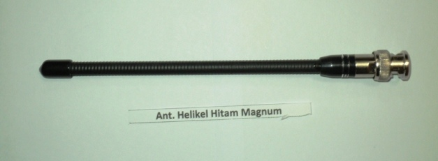 ant helikel hitam magnum